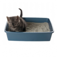 The litter box should be placed in a location that is easily accessed by the cat, yet out of the way.