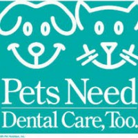 Pet Dental FAQ